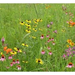 Mix 136 - Northern Wildflower Garden Mix