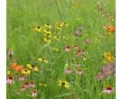 Mix 138 - Southern Wildflower Garden Mix