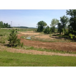 Mix 209 - Southern Quick Erosion Control Cover Mix