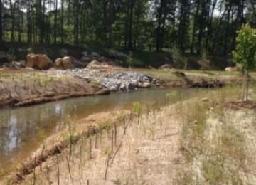 Passive Acid Mine Wetland Mix
