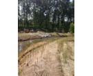 Mix 202 - Native Passive Acid Mine Wetland Mix