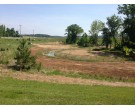 Mix 208 - Southern Quick Erosion Control Cover Mix